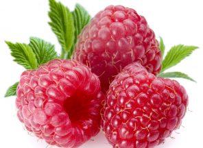 raspberry ketones frambozen ketonen dieet pillen vergelijker snel afvallen afslankpillen afslanken 5 kilo afvallen